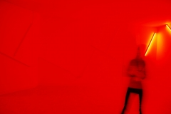 D_Millinghaus_Lady in Red