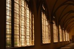 Münster_08