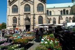 Münster_10