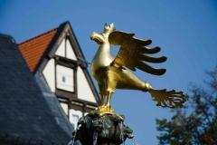 Goslar Reise Fotoclub